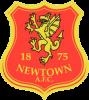 Newtown AFC Logo
